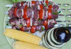 Alimento all'aperto - vicino su di carne sugli spiedi, verdi Fotografia Stock Libera da Diritti