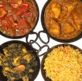Alimento & riso indiani del curry Immagine Stock