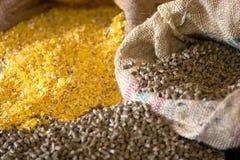 Alimento animal del maíz Fotografía de archivo