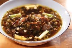 Alimento asiático, guisado de carne de vaca Fotos de archivo