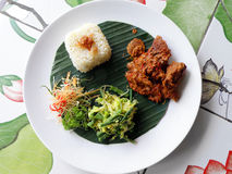 Alimento asiatico etnico, rendang del curry del manzo Immagini Stock