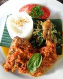 Alimento asiatico - pollo piccante cotto fotografia stock