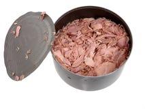 Alimento: Atum em uma lata Fotos de Stock Royalty Free