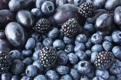 Alimento azul e preto fundo dos frutos e das bagas Amoras-pretas, mirtilos, ameixas e uvas frescos Imagem de Stock