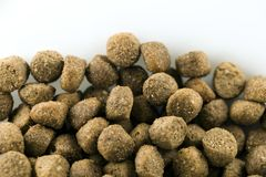 Alimento bio- per il cane immagini stock