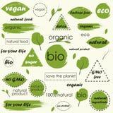 Alimento biológico, iconos del producto fresco y natural de la granja y colección de los elementos stock de ilustración