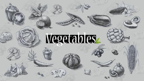 Alimento biológico Verduras Gráfico de lápiz Fotografía de archivo