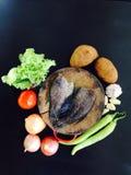 Alimento biologico fresco e pesce salato sullo spezzettamento sul fondo nero Fotografia Stock