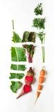 Alimento biologico sano, verdure crude del taglio, disposizione piana Fotografia Stock