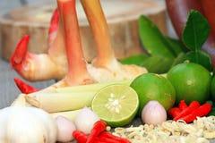 Alimento caldo e piccante asiatico Fotografie Stock