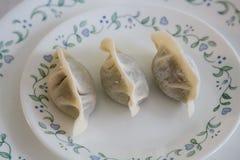 Alimento caseiro do chinês tradicional: Fazendo o bolinho de massa fervido Imagens de Stock