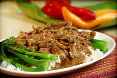Alimento chinês e vietnamiano Imagens de Stock Royalty Free