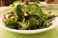 Alimento chinês - prato frio Foto de Stock Royalty Free
