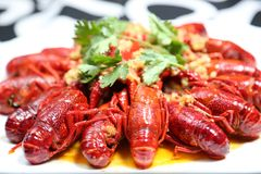 Alimento chinês sichuan das lagostas picantes imagens de stock royalty free
