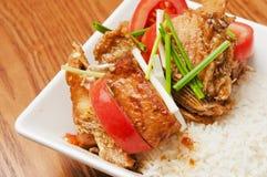 Alimento chino - tomates y pescados Foto de archivo libre de regalías