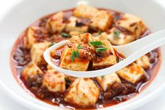 Tofu de Mapo, estilo de sichuan Fotografia de Stock Royalty Free