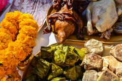 Alimento cinese di celebrazione del nuovo anno immagine stock