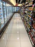 Alimento congelato Fotografia Stock