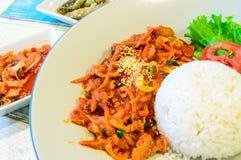 Jewukdepbab, carne de porco Stir-Fritada com molho de pimentão coreano seriu em r Fotografia de Stock