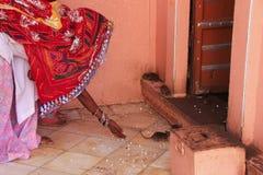 Alimento d'offerta per i ratti, Karni Mata Temple, Deshnok della donna indiana, Immagine Stock Libera da Diritti