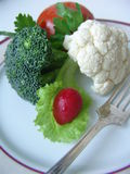 Alimento da dieta imagem de stock