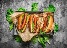 Alimento da rua Assado da carne dos cachorros quentes com molhos picantes Foto de Stock Royalty Free