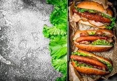 Alimento da rua Assado da carne dos cachorros quentes com molhos picantes Imagem de Stock Royalty Free