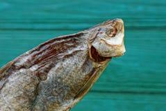 Alimento dalla ram asciutta salata del pesce su un fondo verde fotografia stock