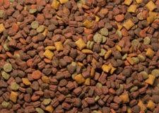 Alimento de animal de estimação seco Foto de Stock Royalty Free