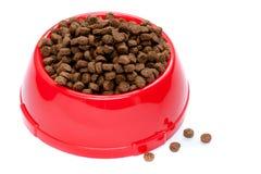 Alimento de animal doméstico en tazón de fuente rojo Imágenes de archivo libres de regalías
