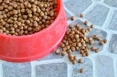 Alimento de animal doméstico en tazón de fuente rojo Fotos de archivo libres de regalías