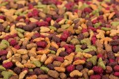 Alimento de animal doméstico seco Pedazos frescos de la comida para gatos fotografía de archivo