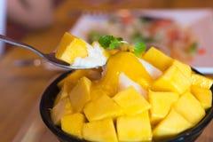 Alimento de Bingsu Coreia imagens de stock royalty free