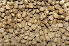 Alimento de cão pequeno Imagens de Stock Royalty Free
