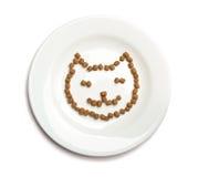 Alimento de gato seco Fotografia de Stock