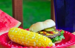 Alimento de la comida campestre del verano Fotografía de archivo libre de regalías