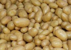 Alimento de los vehículos sin procesar de las patatas Foto de archivo