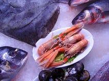 Alimento de mar Imagens de Stock Royalty Free