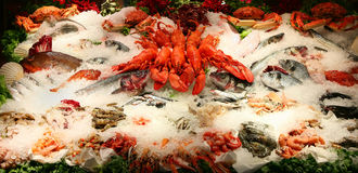 Alimento de mar Imagem de Stock