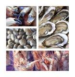 Alimento de mar Fotografía de archivo libre de regalías