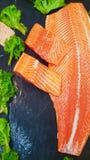Alimento de mar fotos de stock