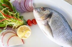 Alimento de mar do serviço foto de stock