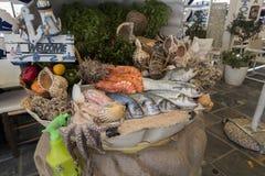 Alimento de mar fresco Fotos de Stock Royalty Free