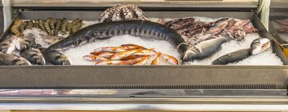 Alimento de mar fresco Imagens de Stock Royalty Free
