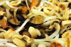 Alimento de mar misturado Imagem de Stock Royalty Free