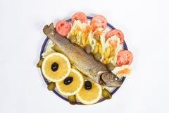 Alimento de peixes Fotografia de Stock