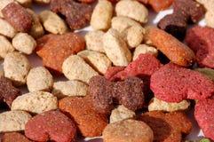 Alimento de perro Foto de archivo libre de regalías