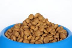 Alimento de perro en tazón de fuente Foto de archivo libre de regalías