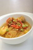 Alimento de Ásia do caril da galinha Fotografia de Stock Royalty Free