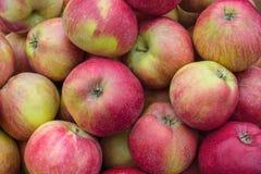 Alimento del fondo Il rosso macchia le mele immagine stock libera da diritti
